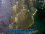Vindem cutie de viteze pentru fiat ducato 2 8 jtd www automuha ro Dezmembrări auto în Suceava, Suceava Dezmembrari