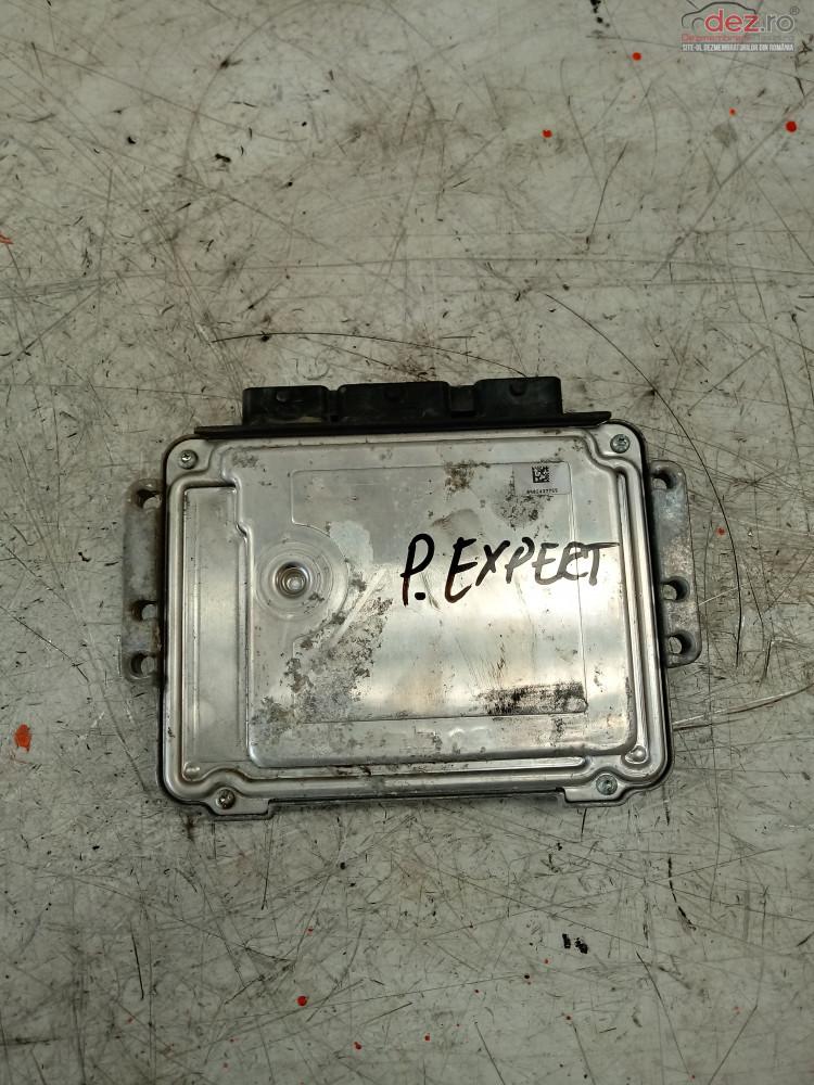Calculator Motor Peugeot Expert  Cod   0281013869    9664356980  Piese auto în Cosereni, Ialomita Dezmembrari