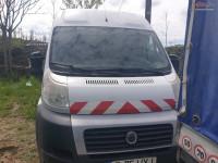 Vand Fiat Ducato 250/BCMFB din 2010, avariat in spate Mașini avariate în Bucuresti Sector 3, Ilfov Dezmembrari
