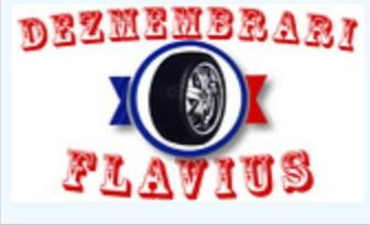 Dezmembrari Flavius
